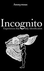 a-i-incognito-cover.jpg